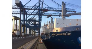 Seatrade selects London Container Terminal for new Fast Transit Pacific Reefer Service