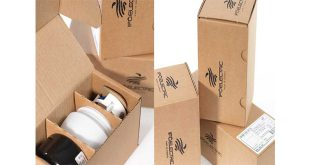 Smurfit Kappa bright idea for packaging leads to ScanStar award